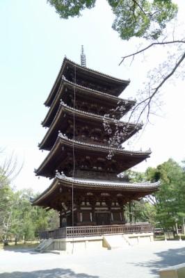 仁和寺 の 五重の塔と桜