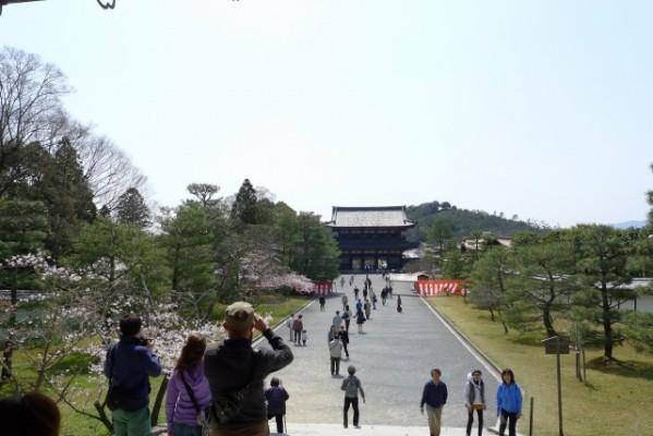 仁和寺 の 境内から仁王門を望む