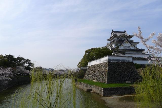 岸和田城の桜とお堀