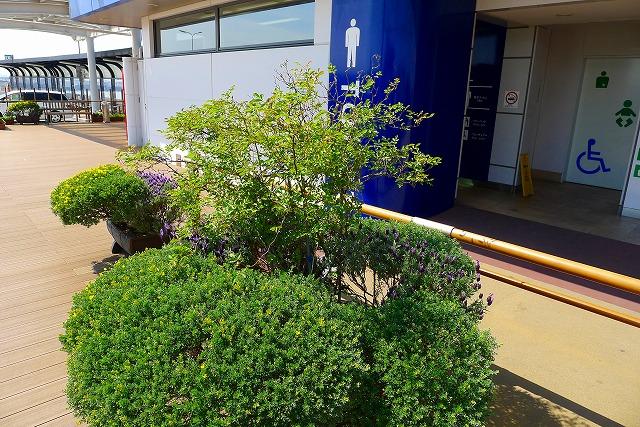 阪神高速 湾岸線の中島パーキングエリア トイレの入り口