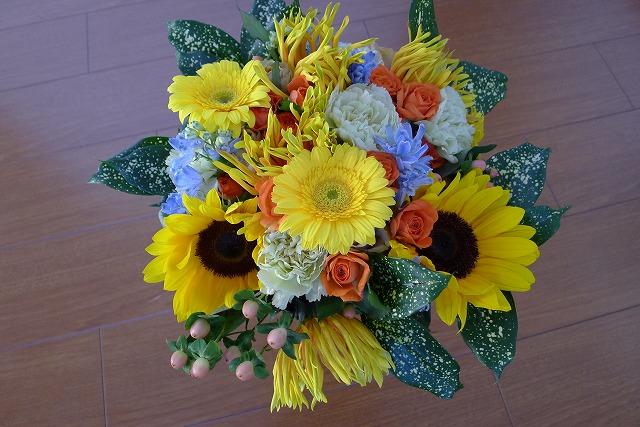 綺麗なお花