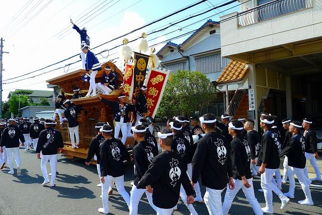 2013 10月 岸和田だんじり祭り 試験引き 中井町の十五人組