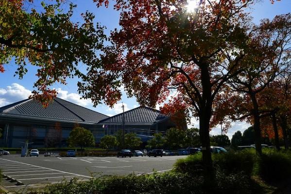岸和田中央公園と総合体育館