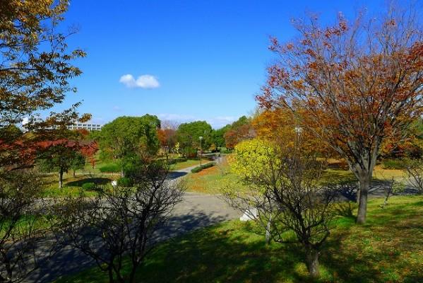 岸和田中央公園の散策コース
