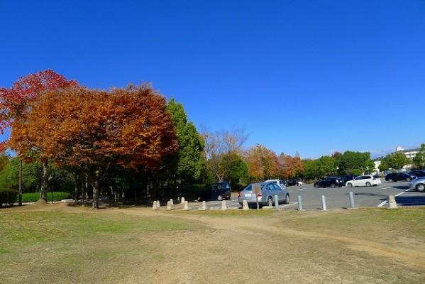 岸和田中央公園の駐車場