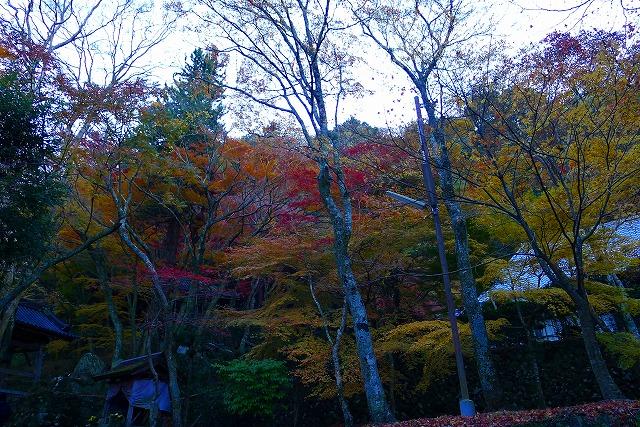 大威徳寺の境内紅葉