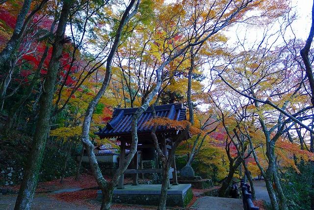 大威徳寺の鐘楼と紅葉
