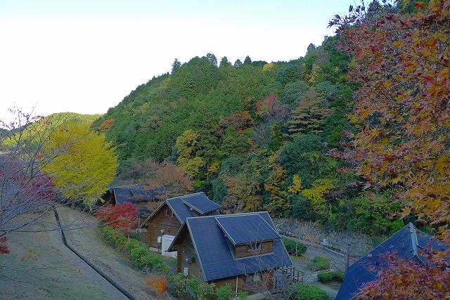 秋のいよやかの郷のロッジ
