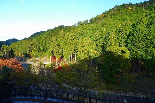 和(なごみ)カフェから見える山の景色