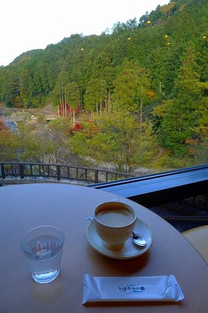 石釜有機豆のコーヒーと窓から見える風景
