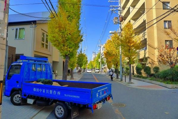 大阪市の銀杏並木