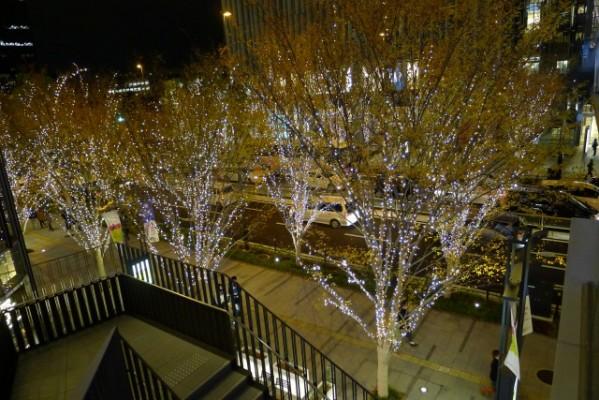 グランフロント大阪北館へつづくライトアップ
