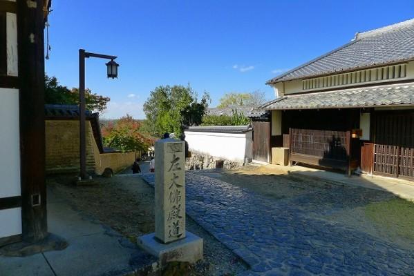 桐たんすの社長がお届けする。奈良公園の紅葉第2弾です。