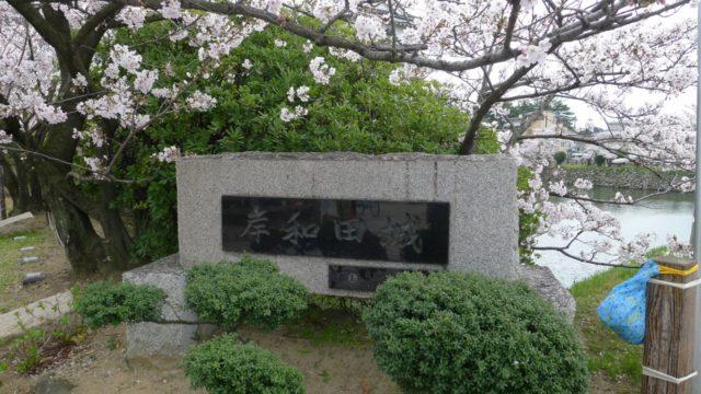 2015年 岸和田城の桜 13