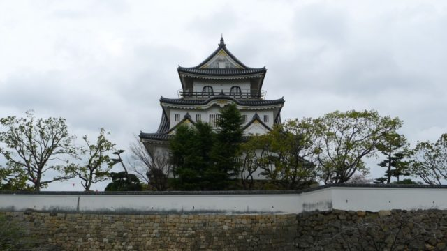 2015年 岸和田城の桜 22