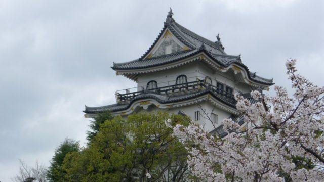 2015年 岸和田城の桜 25