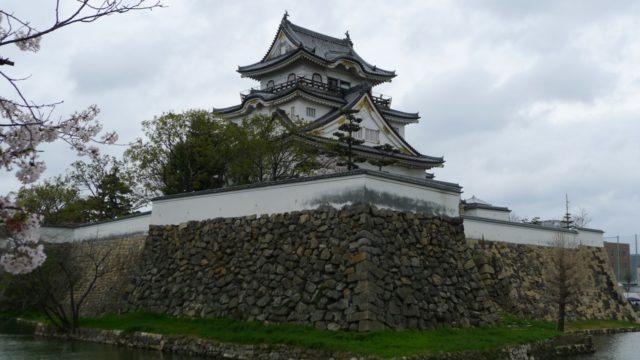 2015年 岸和田城の桜 28