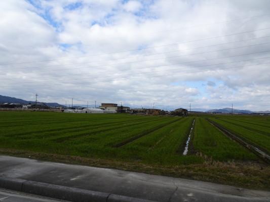 近江米の産地で田園地帯