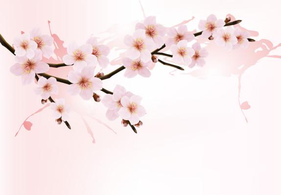★初音の泉州総桐たんす春のご予約会 開催のお知らせ★