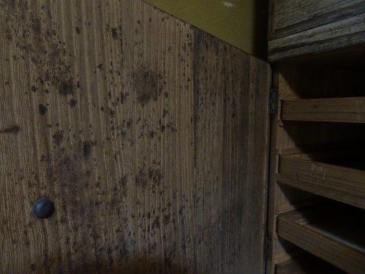 桐たんすの洗い替えまえの三つ重ね桐衣装箪笥の戸びら内部