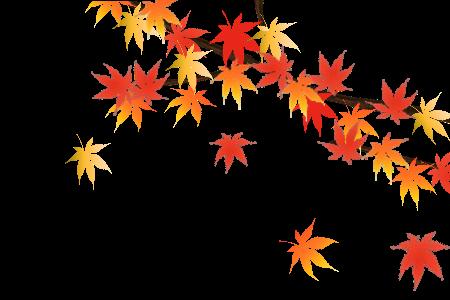 ★ 大阪泉州桐箪笥 秋の大感謝祭のお知らせ★