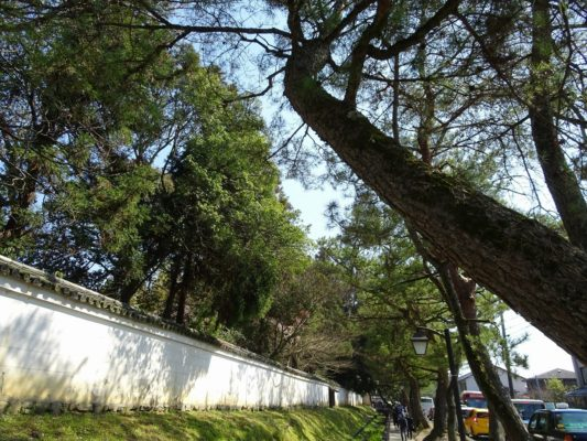 こだわりの桐たんすの社長ブログ 豊臣秀吉ゆかりの花見と言えば!導かれるように、醍醐寺へ