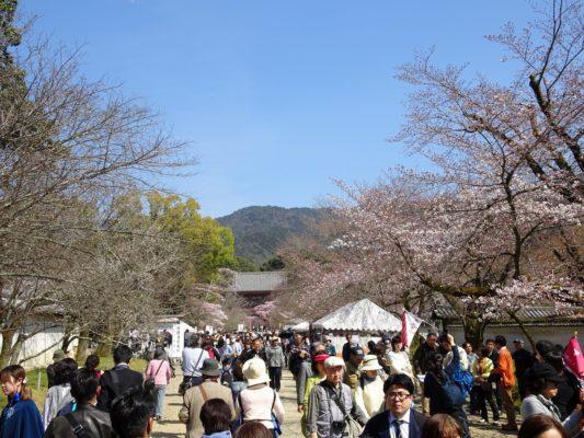 醍醐寺の境内