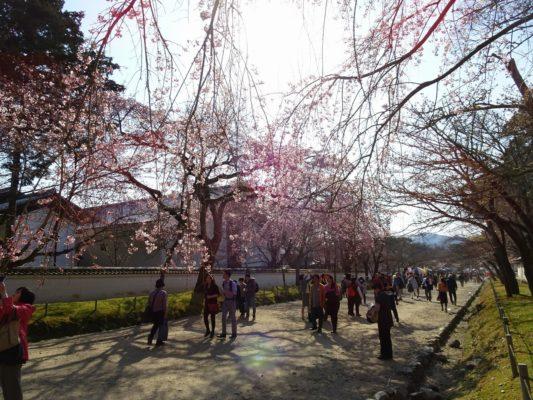 京都 醍醐寺の境内 観光客