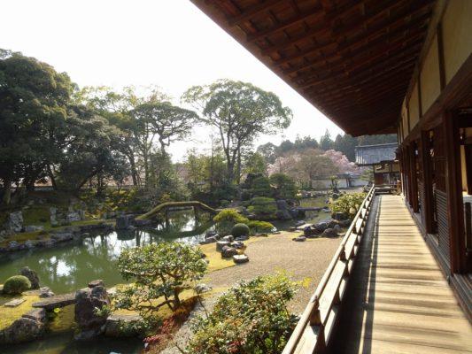 京都 醍醐寺の三宝院の庭園を廊下から撮影2