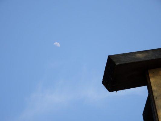 西国三十三観音霊場 第十一番札所 総本山醍醐寺と月の写真