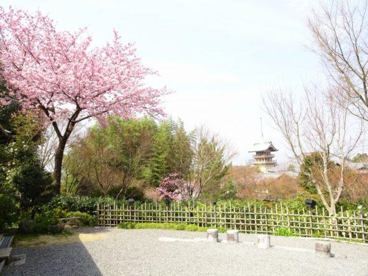 高台寺入口からの景色