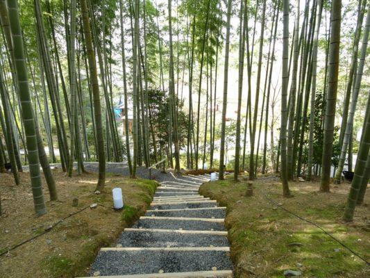 高台寺 竹藪と回廊
