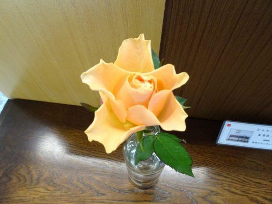 こだわりの桐箪笥の社長ブログ 心安らぐ桐箪笥とお花の初音のショールーム!
