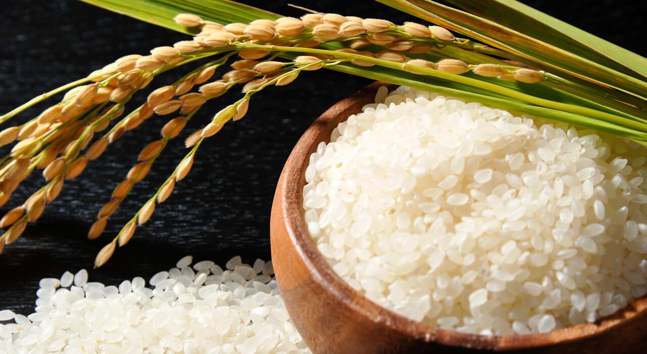 桐箪笥の社長ブログ 日本の主食の米がたいへんな事になっています。