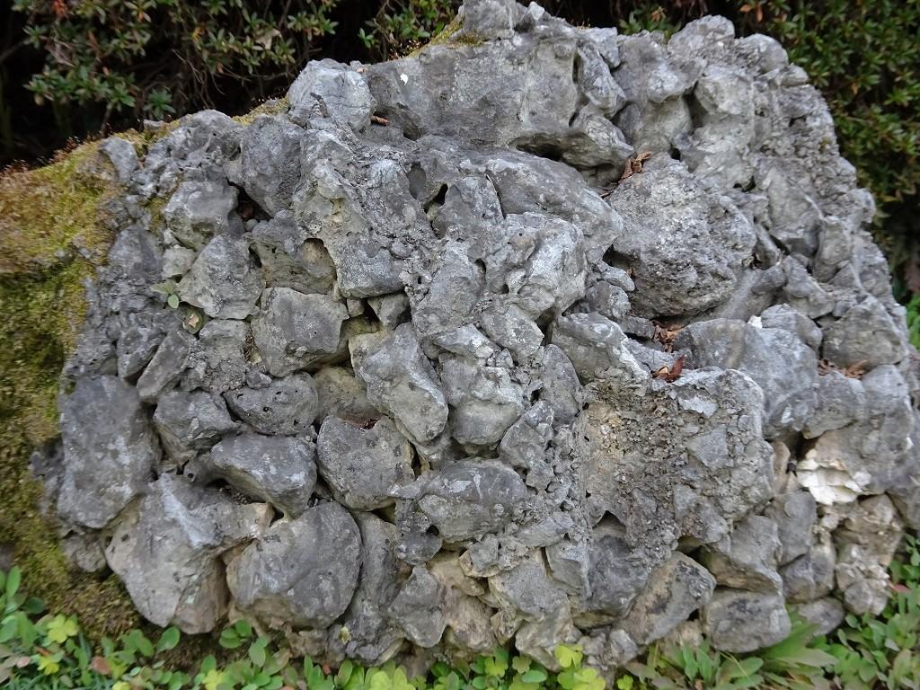 さざれ岩 さざれ石
