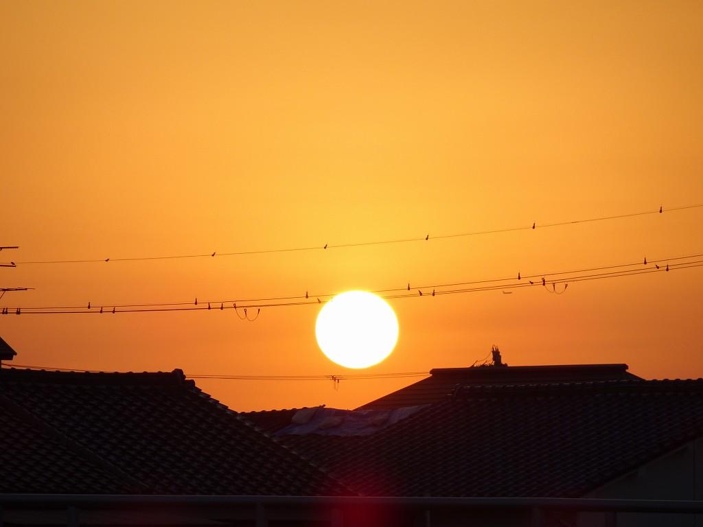 泉大津川から見た夕日の写真