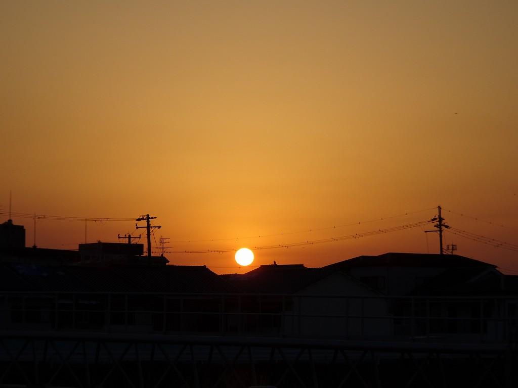 泉大津川から見た夕日