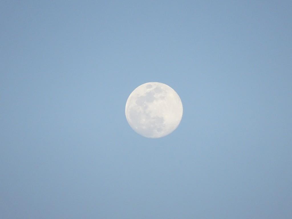 お月さんのズームアップ 写真