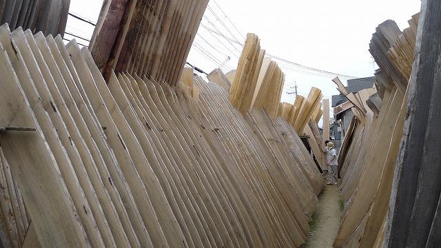 こだわりの桐たんすの社長ブログ 新しい製材仕立ての桐の木をダテにたてて乾かす作業の事を、木干し(きいほし)と言います。